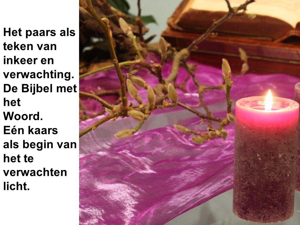De tronk als stamboom voor het geslachts- register van Jezus.