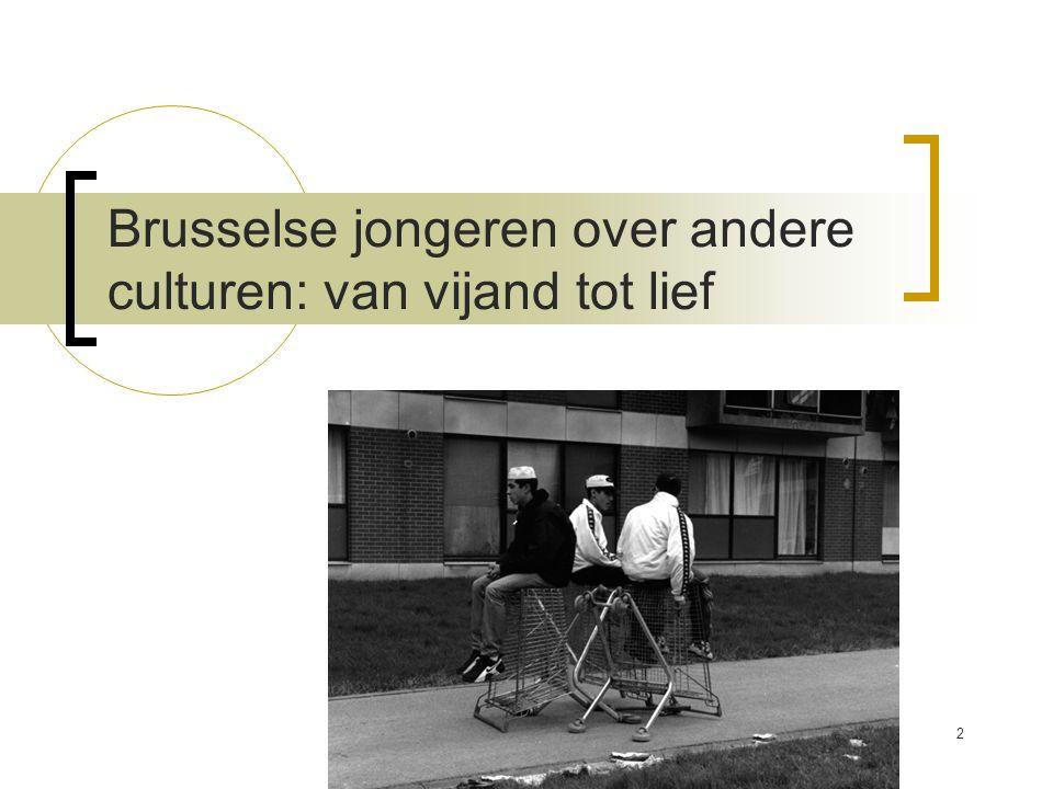 Brusselse jongeren over andere culturen: van vijand tot lief 2