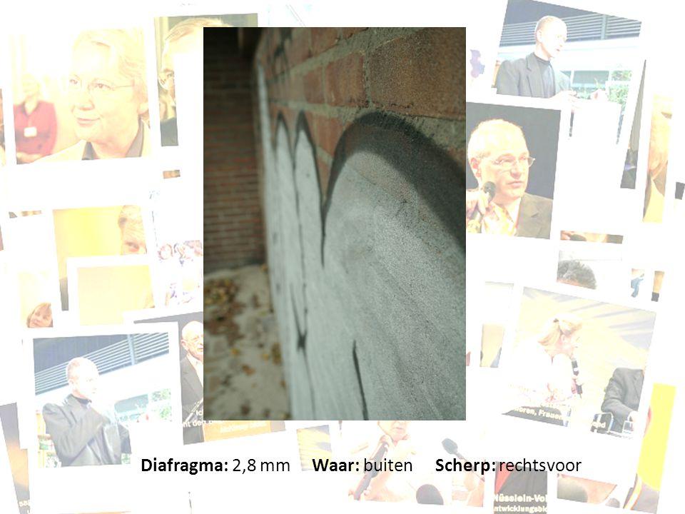 Diafragma: 2,8 mm Waar: buiten Scherp: rechtsvoor