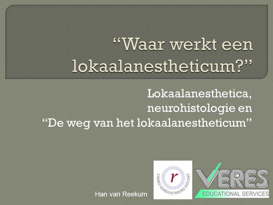 """Lokaalanesthetica, neurohistologie en """"De weg van het lokaalanestheticum"""" Han van Reekum"""