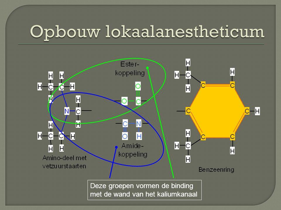 pKa: oplosbaarheid in water door ionisatie lipofiel: passage door dubbele fosfolipide laag Eiwitbinding: binding aan kanaaleiwit aan de binnenzijde