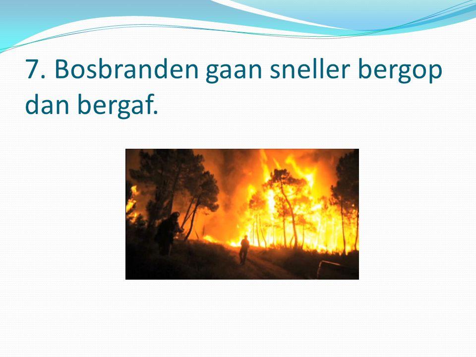 7. Bosbranden gaan sneller bergop dan bergaf.