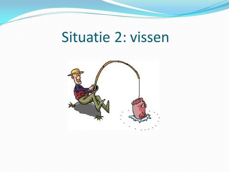 Situatie 2: vissen