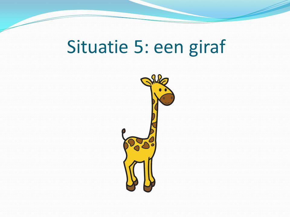 Situatie 5: een giraf