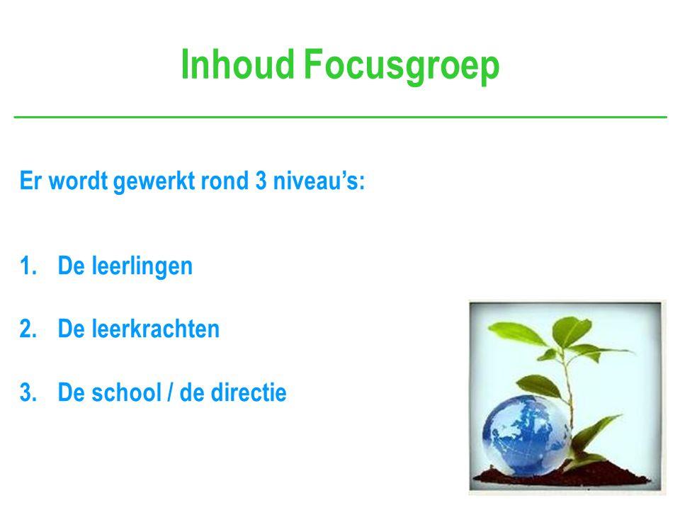 Inhoud Focusgroep Er wordt gewerkt rond 3 niveau's: 1.De leerlingen 2.De leerkrachten 3.De school / de directie