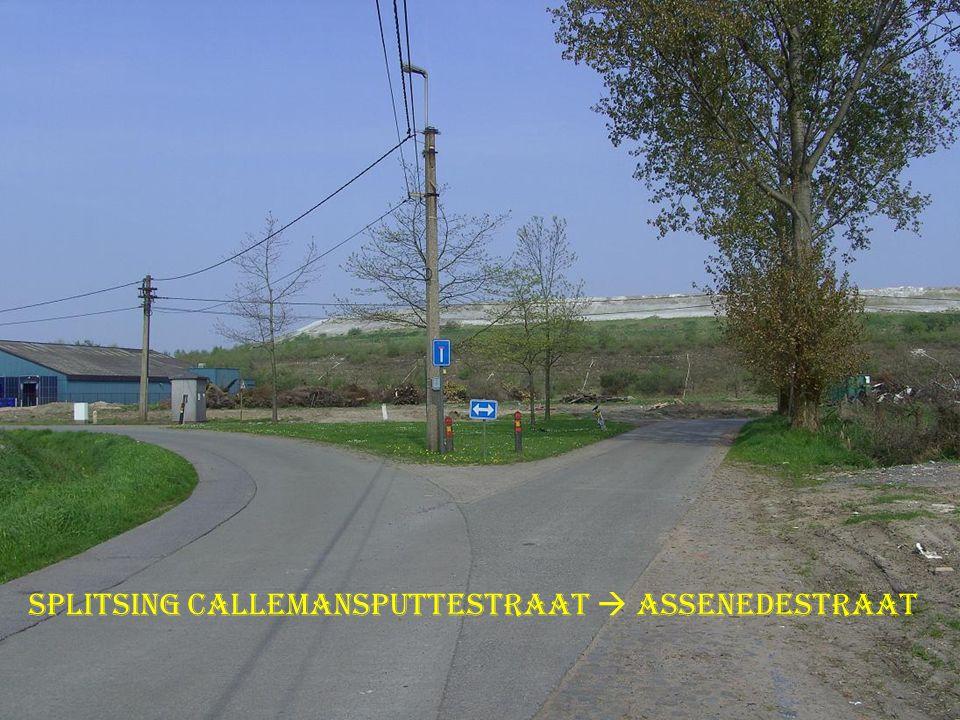 Splitsing Callemansputtestraat  Assenedestraat