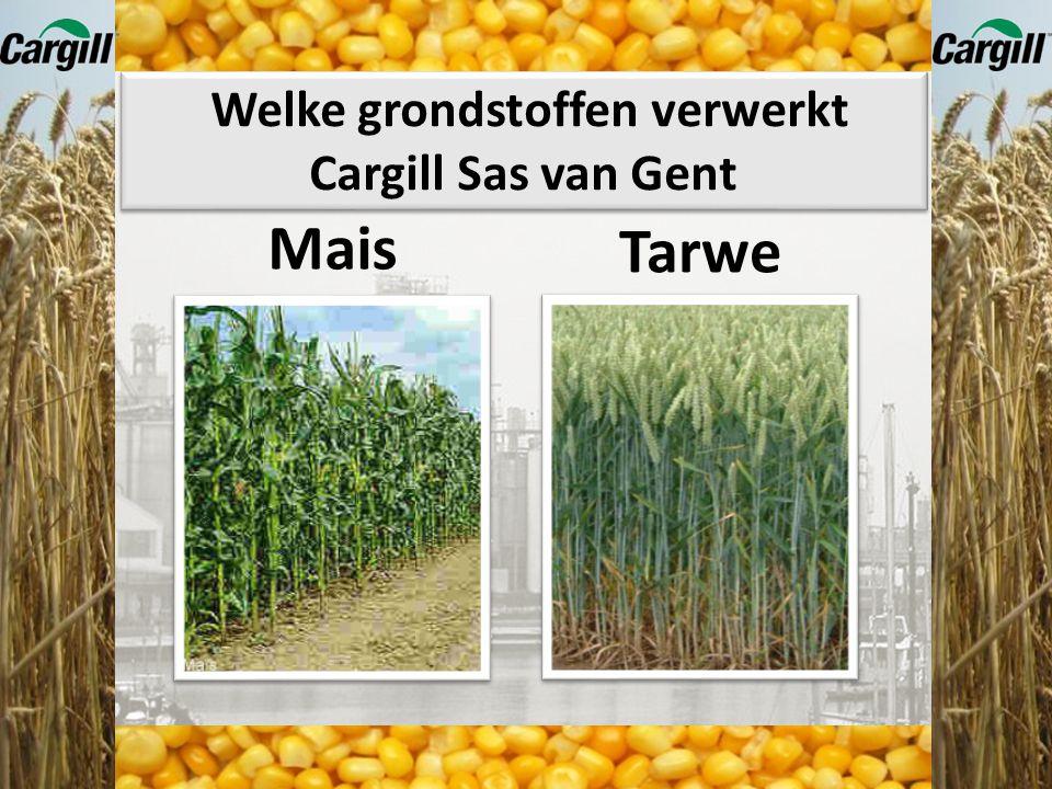 Welke grondstoffen verwerkt Cargill Sas van Gent Producten waar maiszetmeel en tarwezetmeel in zit Bekendheid Cargill Sas van Gent Plaatsen van de spe