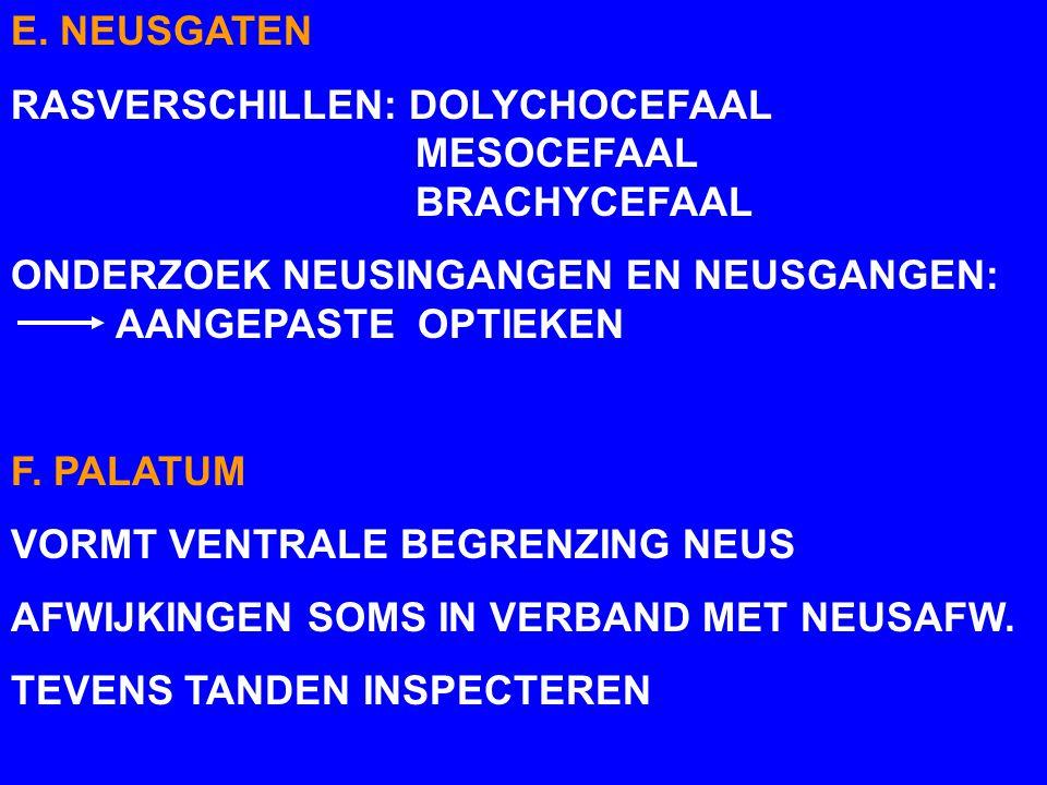 E. NEUSGATEN RASVERSCHILLEN: DOLYCHOCEFAAL MESOCEFAAL BRACHYCEFAAL ONDERZOEK NEUSINGANGEN EN NEUSGANGEN: AANGEPASTE OPTIEKEN F. PALATUM VORMT VENTRALE
