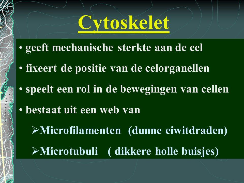 Cytoskelet geeft mechanische sterkte aan de cel fixeert de positie van de celorganellen speelt een rol in de bewegingen van cellen bestaat uit een web