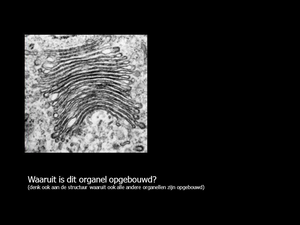 Waaruit is dit organel opgebouwd.