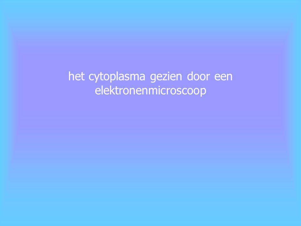 het cytoplasma bestaat uit twee delen: het cytosol = het deel van het cytoplasma dat buiten de organellen ligt de organellen = structuren in het cytoplasma met een kenmerkende bouw en functie