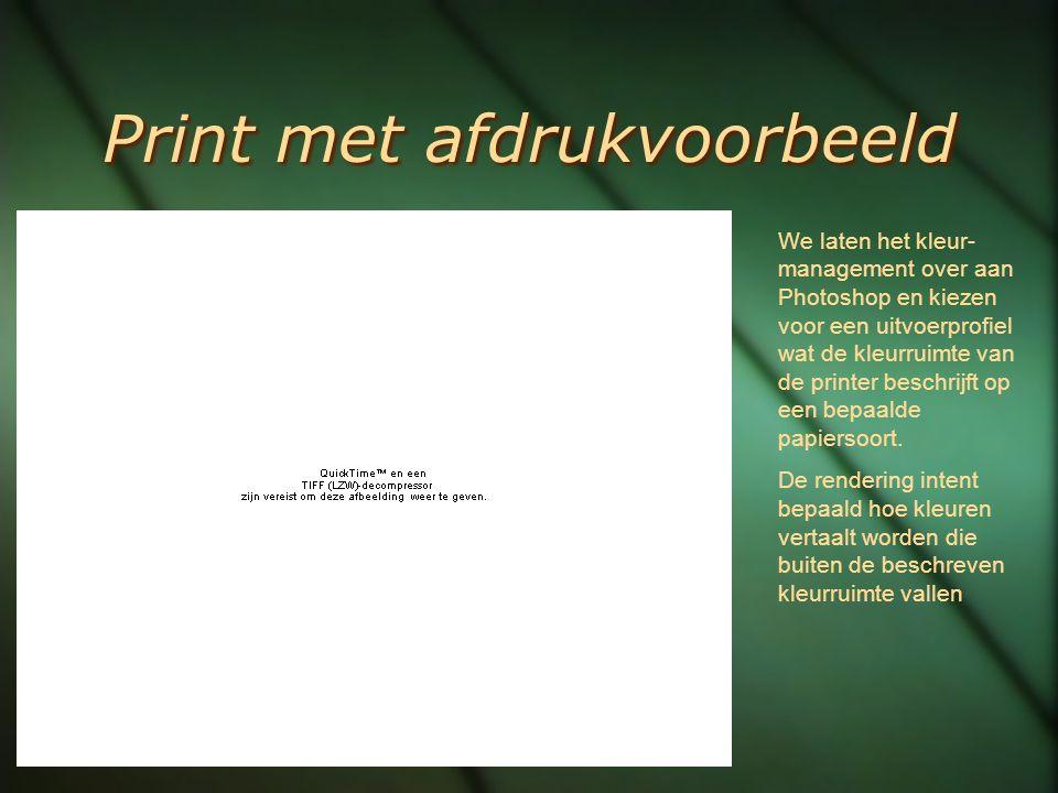 Print met afdrukvoorbeeld We laten het kleur- management over aan Photoshop en kiezen voor een uitvoerprofiel wat de kleurruimte van de printer beschr