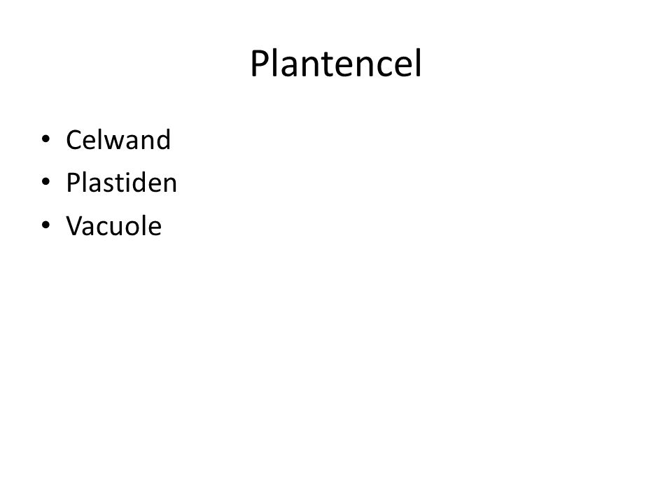 Plantencel Celwand Plastiden Vacuole