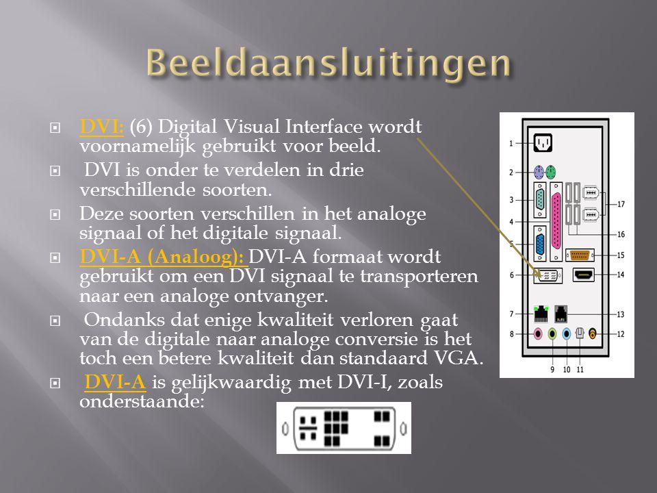  DVI: (6) Digital Visual Interface wordt voornamelijk gebruikt voor beeld.