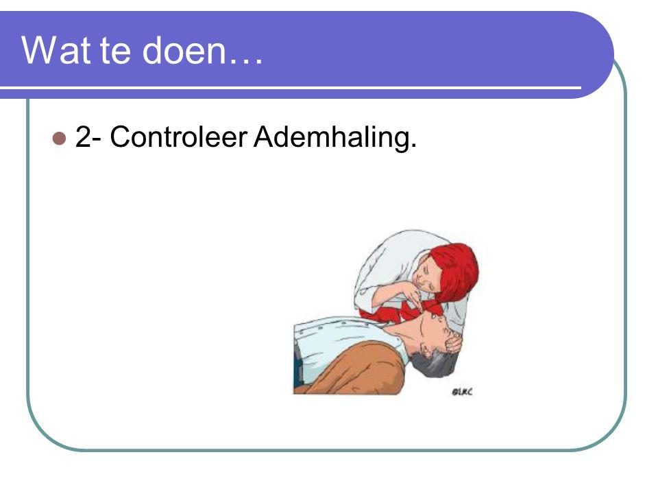 Wat te doen… 2- Controleer Ademhaling.