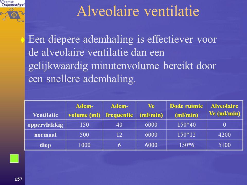 156  Volumes en capaciteiten  Ademminuutvolume: Ve = Vt * f