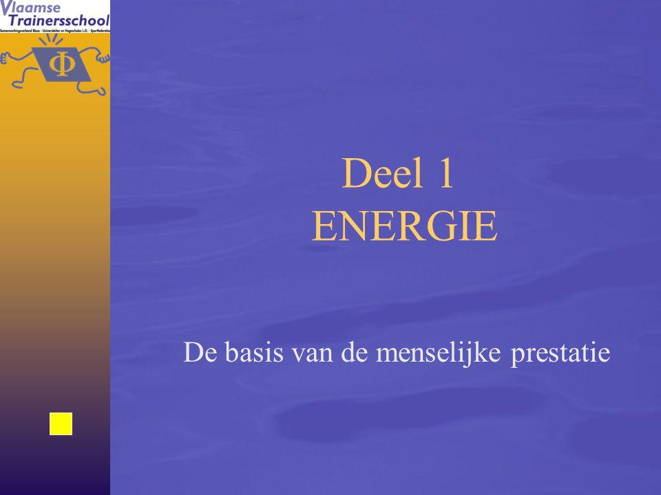 24 Anaëroob alactisch systeem (CP) Anaëroob lactisch systeem (glucogeen) Aëroob systeem (glycogeen, vetten) Ogenblik van energievrijstelling Levert onmiddellijk energie Levert vrij snel energie.