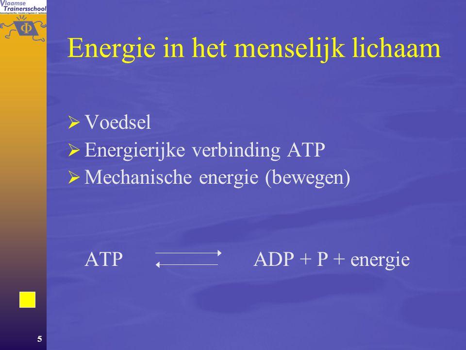 5 Energie in het menselijk lichaam  Voedsel  Energierijke verbinding ATP  Mechanische energie (bewegen) ATP ADP + P + energie