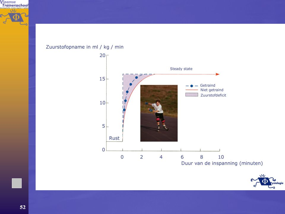 51  Verbeterde vetverbranding  Toegenomen glycogeendepots  CP wordt sneller aangemaakt (belang van uithouding voor niet-duursporters)  Verbeteren