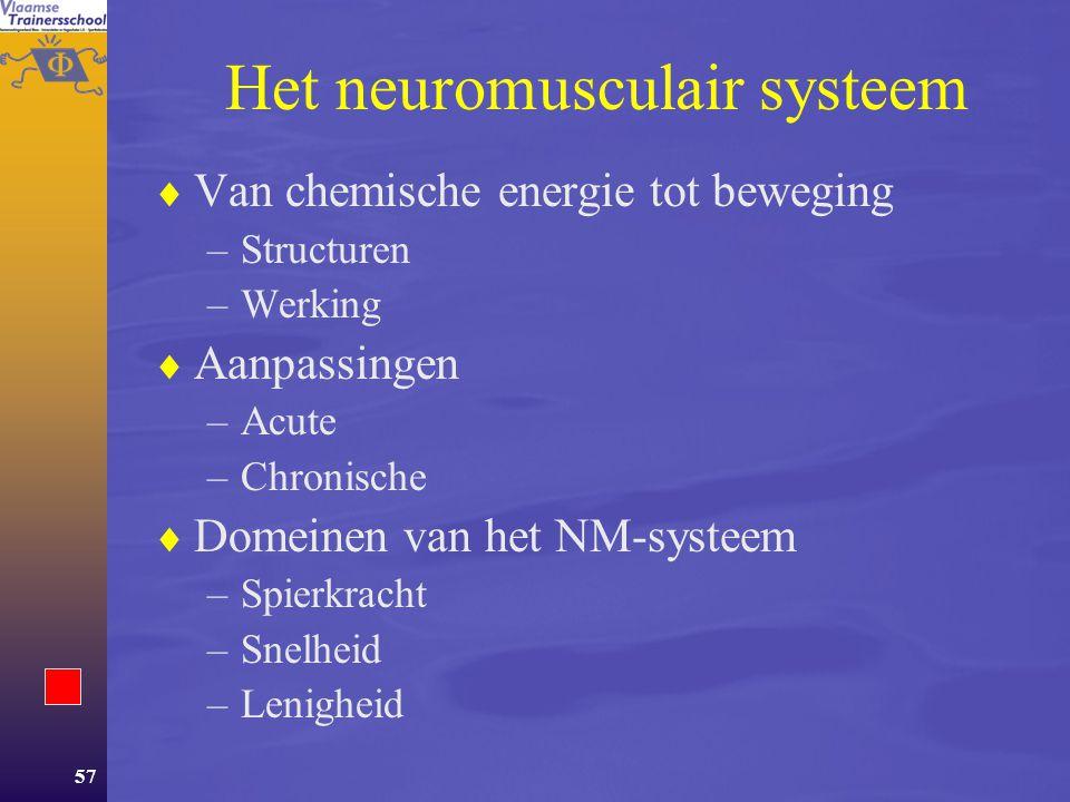 56 Inhoud Deel 1 Energie Deel 2Aanpassingen van het lichaam aan oefening  Metabole aanpassingen  Neuro-musculaire aanpassingen.  Het cardiovasculai