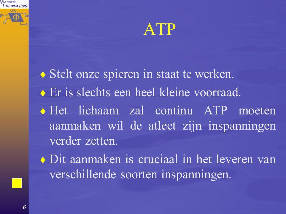 6 ATP  Stelt onze spieren in staat te werken. Er is slechts een heel kleine voorraad.