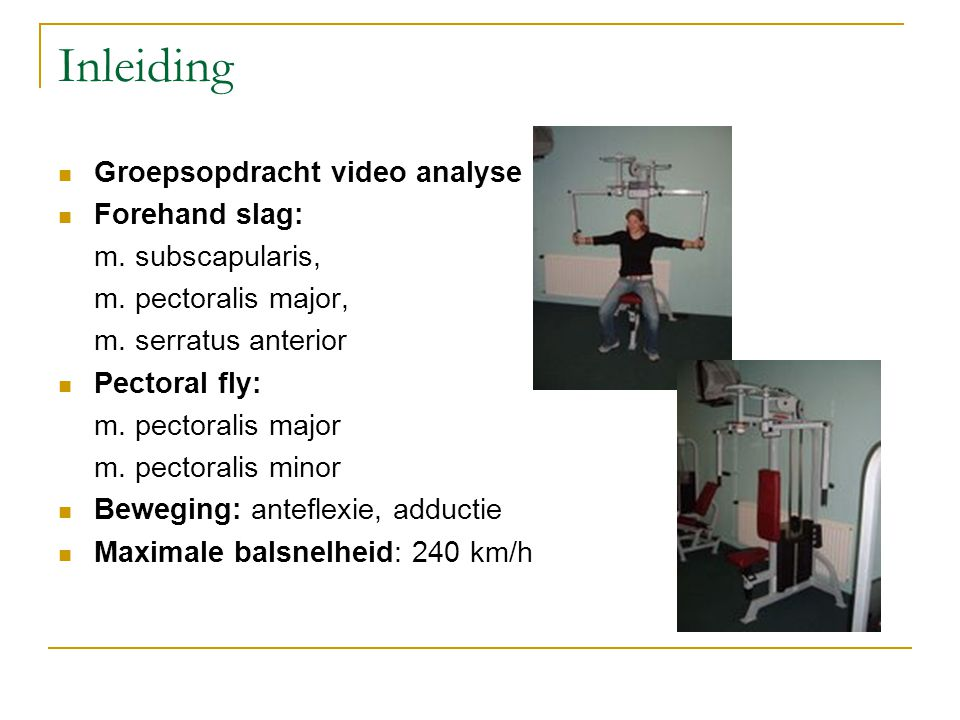 Inleiding Groepsopdracht video analyse Forehand slag: m. subscapularis, m. pectoralis major, m. serratus anterior Pectoral fly: m. pectoralis major m.