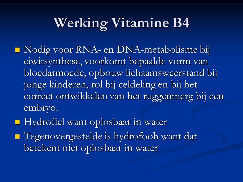 Werking Vitamine B4 Nodig voor RNA- en DNA-metabolisme bij eiwitsynthese, voorkomt bepaalde vorm van bloedarmoede, opbouw lichaamsweerstand bij jonge