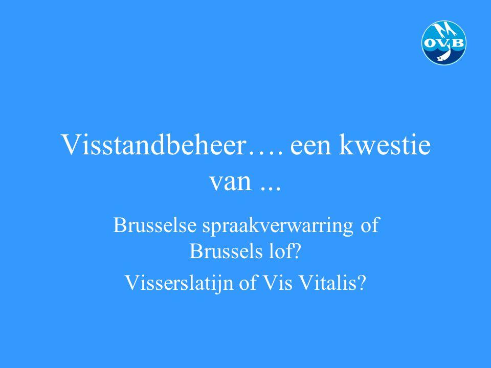 Visstandbeheer…. een kwestie van... Brusselse spraakverwarring of Brussels lof? Visserslatijn of Vis Vitalis?