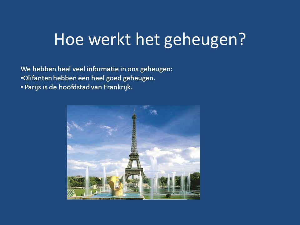 Hoe werkt het geheugen? We hebben heel veel informatie in ons geheugen: Olifanten hebben een heel goed geheugen. Parijs is de hoofdstad van Frankrijk.