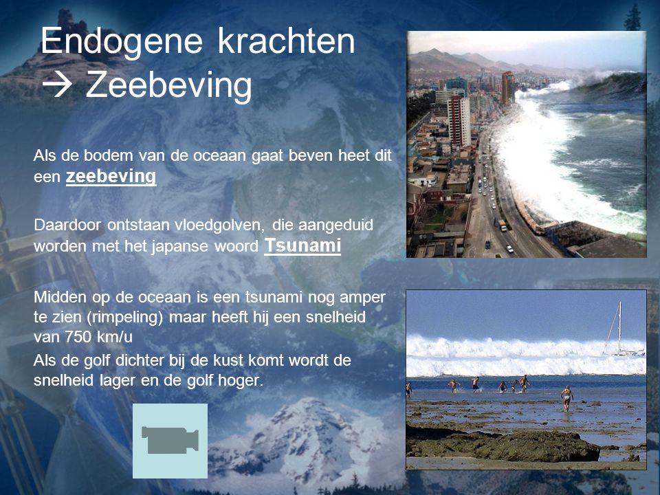 Endogene krachten  Zeebeving Als de bodem van de oceaan gaat beven heet dit een zeebeving Daardoor ontstaan vloedgolven, die aangeduid worden met het
