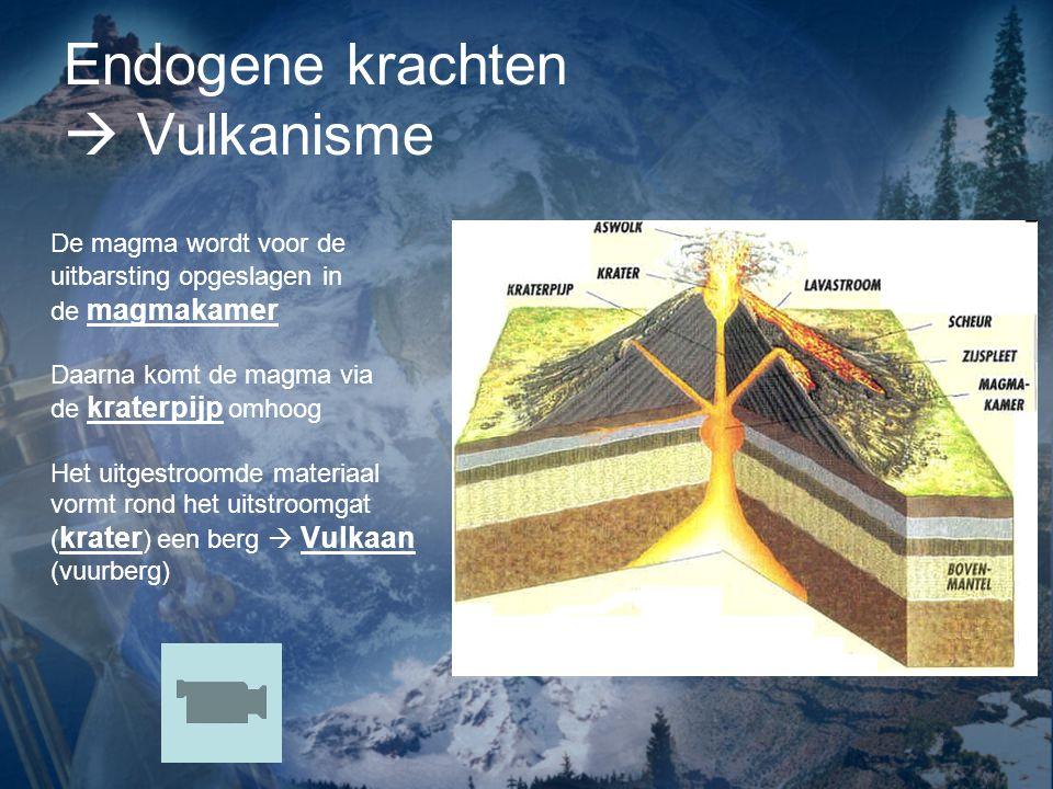 Endogene krachten  Vulkanisme De magma wordt voor de uitbarsting opgeslagen in de magmakamer Daarna komt de magma via de kraterpijp omhoog Het uitgestroomde materiaal vormt rond het uitstroomgat ( krater ) een berg  Vulkaan (vuurberg)