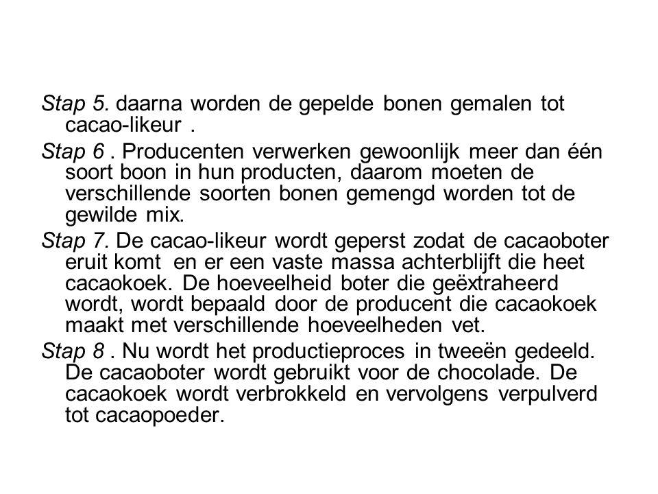 Stap 5. daarna worden de gepelde bonen gemalen tot cacao-likeur. Stap 6. Producenten verwerken gewoonlijk meer dan één soort boon in hun producten, da