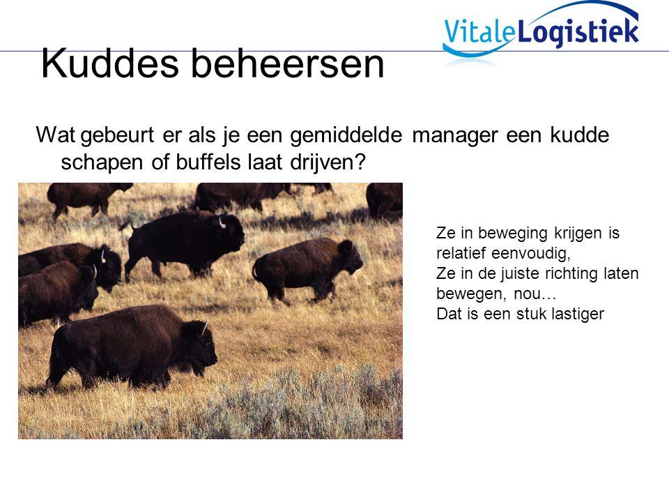 Kuddes beheersen Wat gebeurt er als je een gemiddelde manager een kudde schapen of buffels laat drijven? Ze in beweging krijgen is relatief eenvoudig,