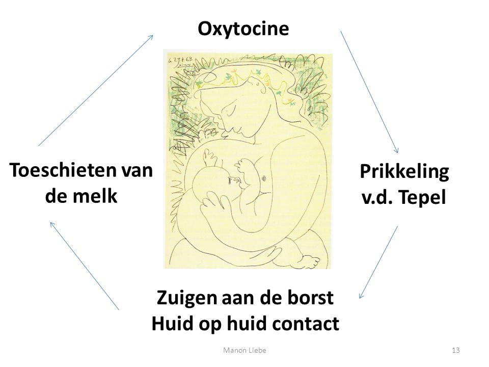 Oxytocine Prikkeling v.d. Tepel Zuigen aan de borst Huid op huid contact Toeschieten van de melk 13Manon Liebe