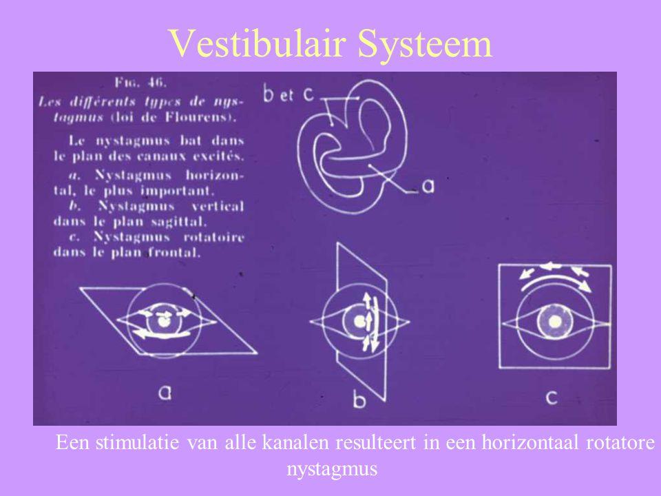 Een stimulatie van alle kanalen resulteert in een horizontaal rotatore nystagmus
