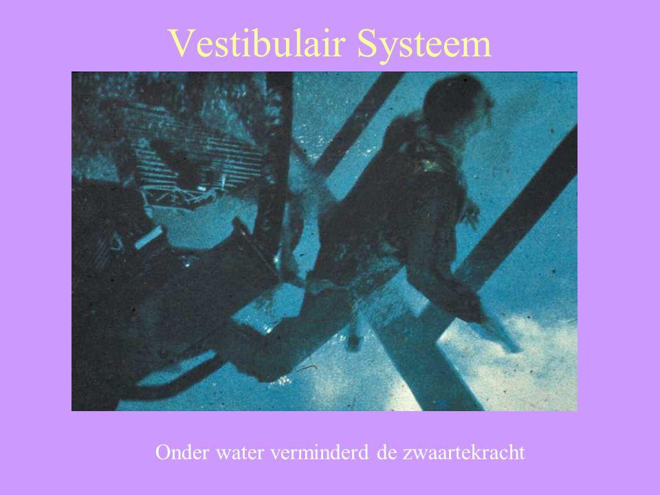 Onder water verminderd de zwaartekracht