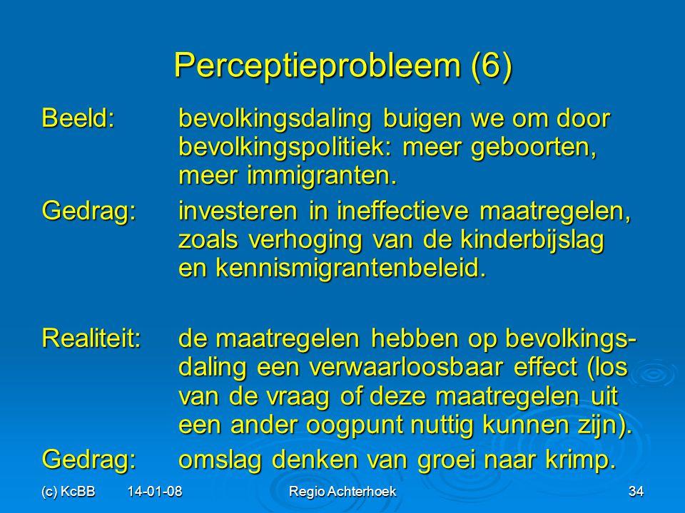 (c) KcBB 14-01-08Regio Achterhoek34 Perceptieprobleem (6) Beeld:bevolkingsdaling buigen we om door bevolkingspolitiek: meer geboorten, meer immigrante