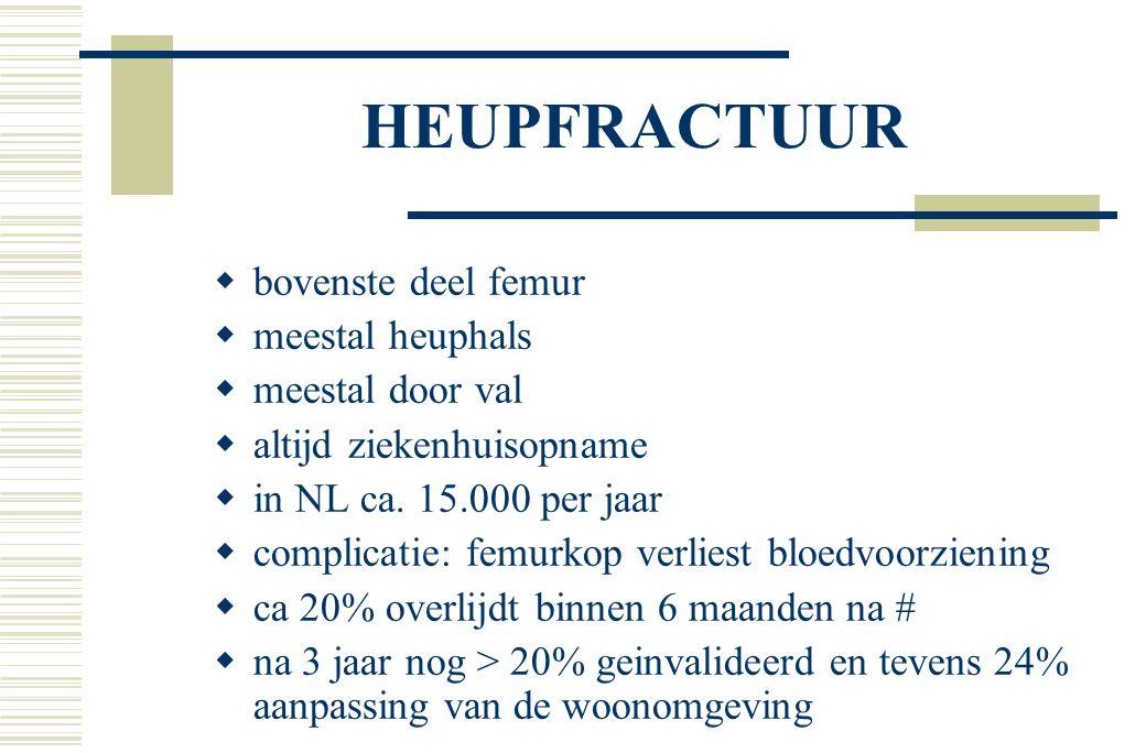 HEUPFRACTUUR  bovenste deel femur  meestal heuphals  meestal door val  altijd ziekenhuisopname  in NL ca.