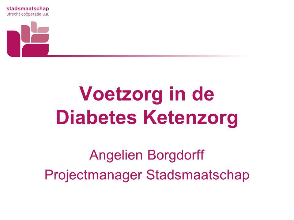 Voetzorg in de Diabetes Ketenzorg Angelien Borgdorff Projectmanager Stadsmaatschap