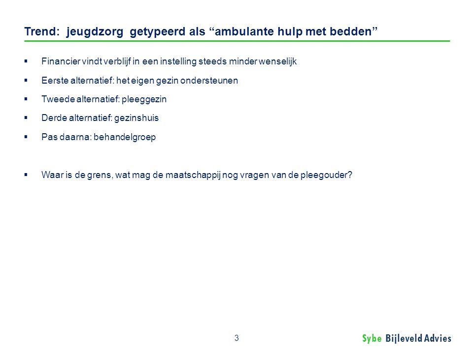 Sybe Bijleveld Advies Trend: standaard Eigen Kracht Conferenties.