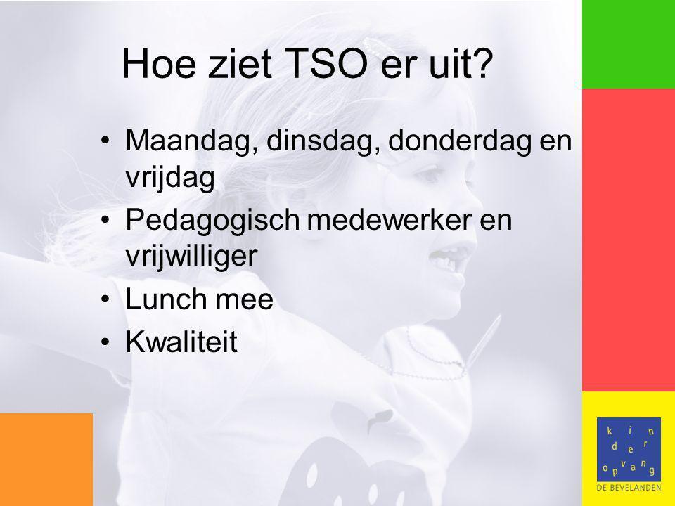 Hoe ziet TSO er uit.