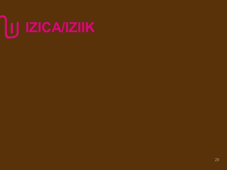 IZICA/IZIIK 29
