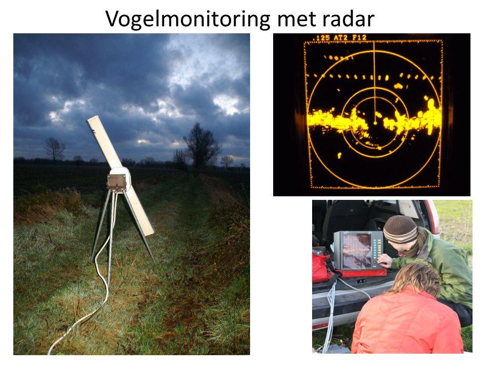 Vogelmonitoring met radar