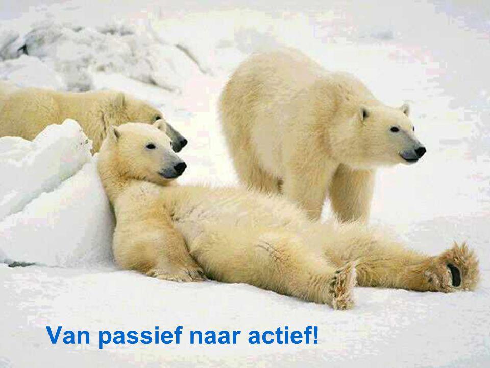 7 november 2011SNF JAARDAG 201111 Van passief naar actief!
