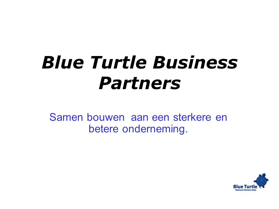Blue Turtle Business Partners Samen bouwen aan een sterkere en betere onderneming.