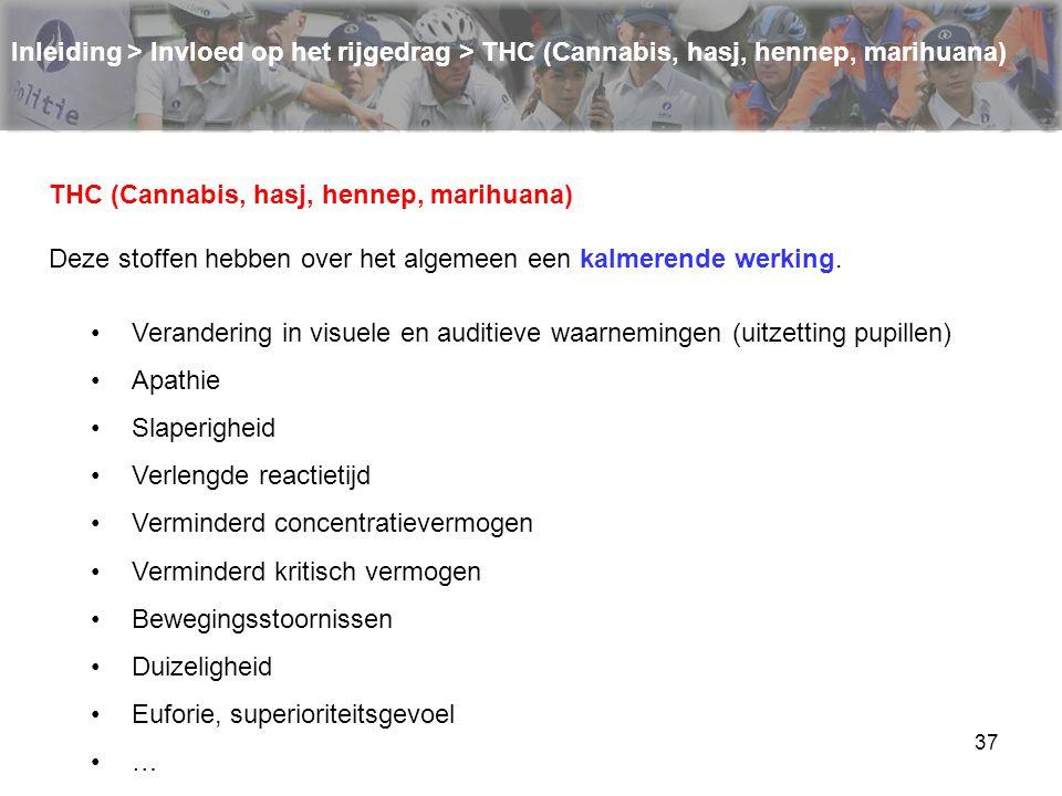 37 Inleiding > Invloed op het rijgedrag > THC (Cannabis, hasj, hennep, marihuana) THC (Cannabis, hasj, hennep, marihuana) Deze stoffen hebben over het