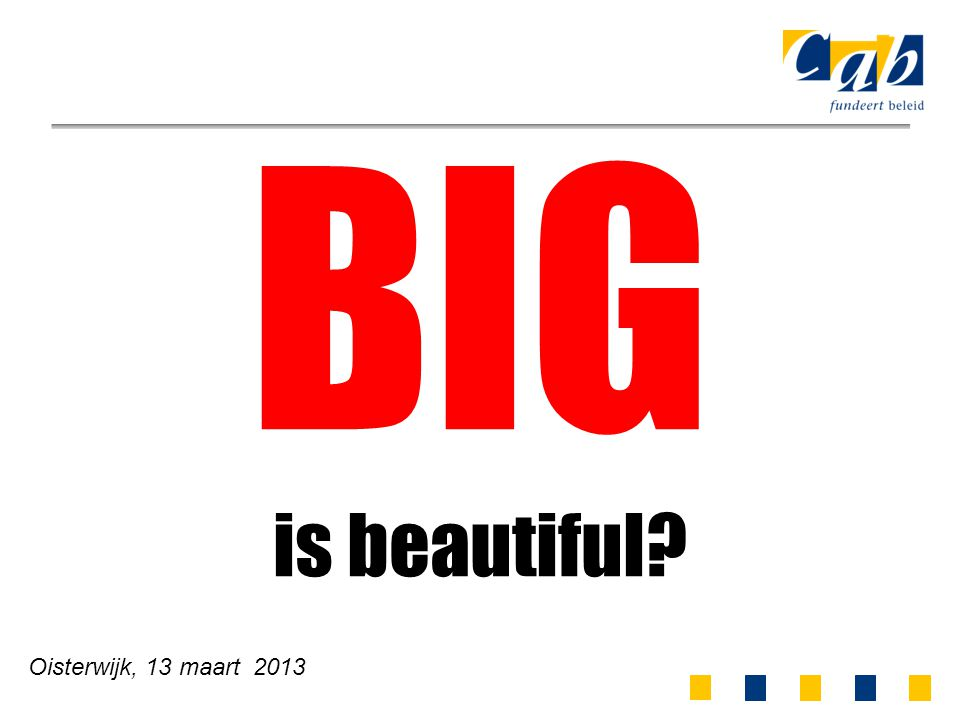 Oisterwijk, 13 maart 2013 BIG is beautiful?