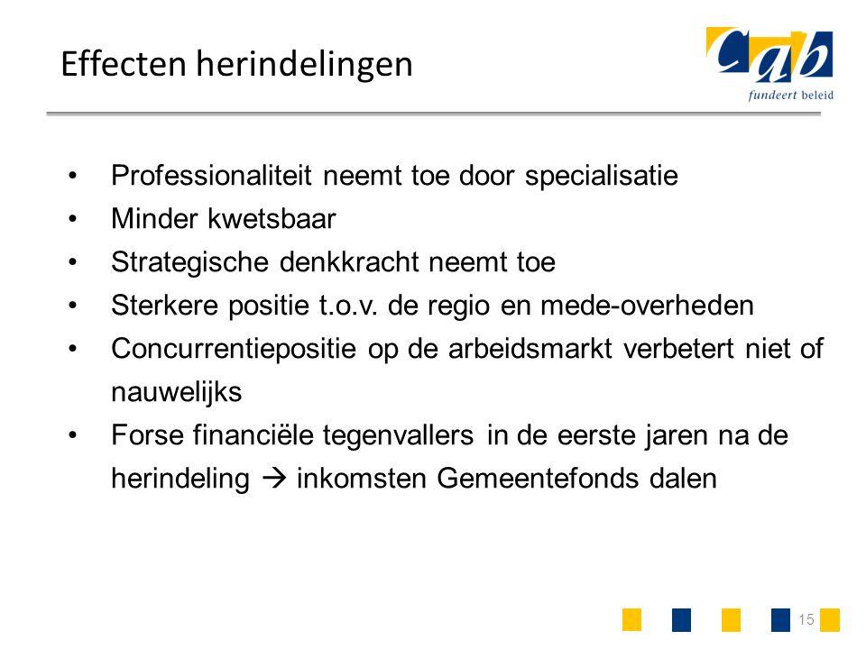 15 Effecten herindelingen Professionaliteit neemt toe door specialisatie Minder kwetsbaar Strategische denkkracht neemt toe Sterkere positie t.o.v. de