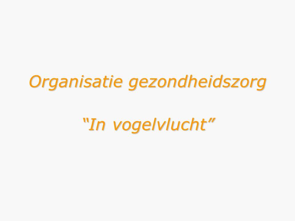 """Organisatie gezondheidszorg """"In vogelvlucht"""""""
