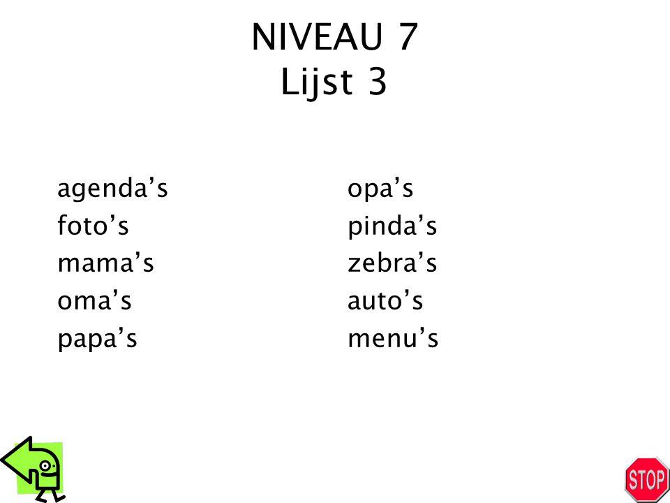 NIVEAU 7 Lijst 3 agenda's foto's mama's oma's papa's opa's pinda's zebra's auto's menu's